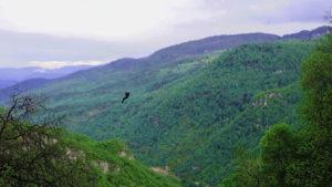 Lastiver - Zipline, Yenokavan, Tavush Province