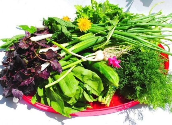 Armenian Herbs