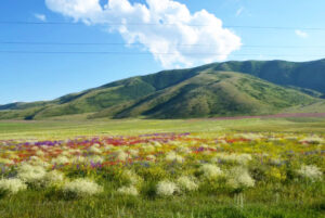 Mount Artanish, 2,461 m, Gegharkunik province