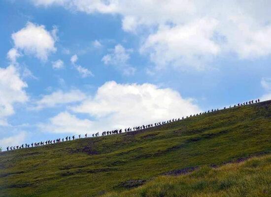 Climbing to Azhdahak, 110 Travelers in the Chain.