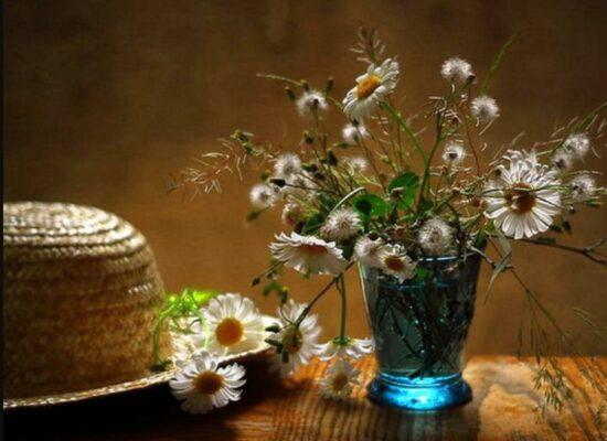 Flowers, Giuseppe Muscio
