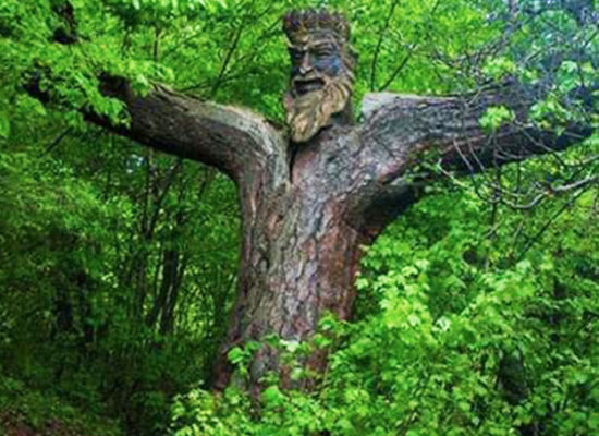 King of Forest, Dilijan.
