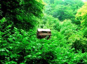Lastiver, Tavush Province