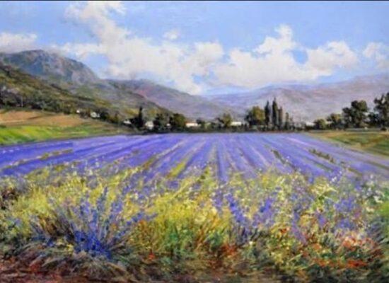 Lavender field, Pasquale Esposito