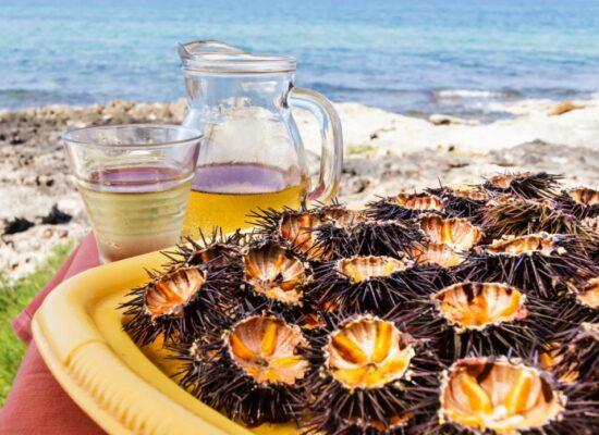 Riccio di Mare, Sea Urchin