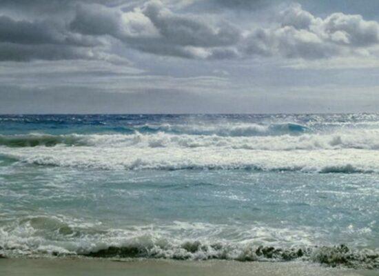 Sea, Ventrone
